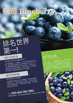 Blueberry-Chinese-sm-300px