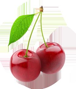 cherry2-250px